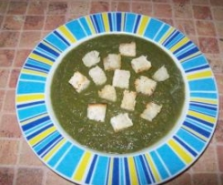 Zupa -krem 15 warzyw