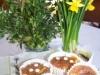 Wariant Mazurek marchewkowy =muffinki :)