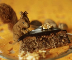 Przysmak wiewiórki